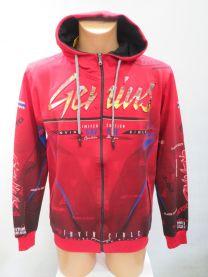 EX1401 Bluza męska C4368 (Product Turkey)